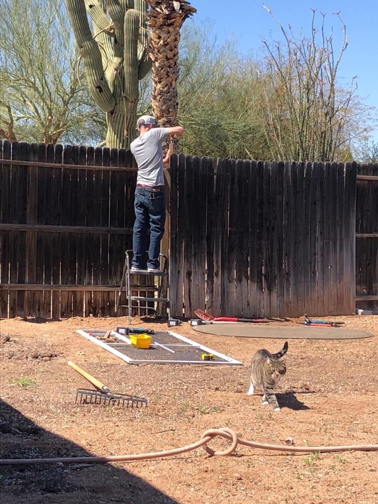Fence-cat-fix